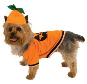 Pumpkin Dog Pet Costumes