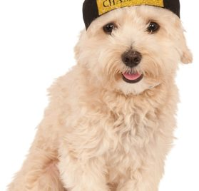 Rubies Costume Company Fetch Champion Pet Hat