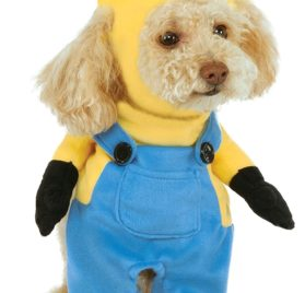 Rubies Costume Company Minion Stuart Arms Pet Suit