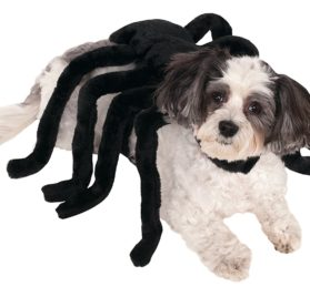 Rubies Costume Company Pet Spider Harness Costume