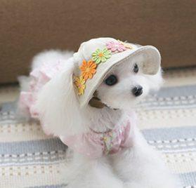 UEETEK Dog Cat Puppy Pet Chihuahua Sport Cap Bucket Hat Visor Sun Hat 2