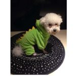 ARJOSA Puppy Dog Cat Thickened Hoodie Jumpsuit Dinosaur Dragon Costume Winter Coat Clothes 5