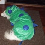 Casual Canine Polyester Dogzilla Dinosaur Dog Costume, X-Small, 8-Inch 2