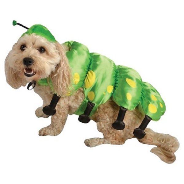 Caterpillar Dog Pet Halloween Costume X-small