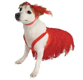 Flapper Dog Pet Costume