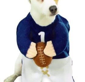 Football Fever Dog Costume SMALL