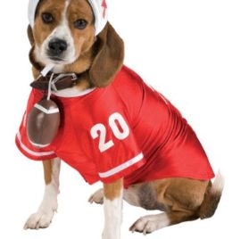 Football Large Star Pet Costume
