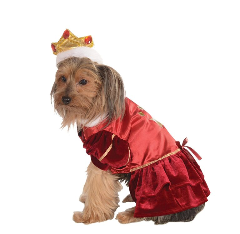 Kanine Queen Dog Costume