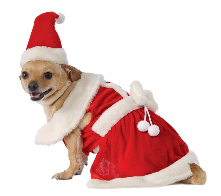 Mrs. Claus Dog Costume