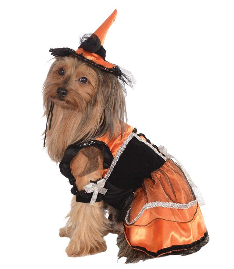 Orange Witch Pet Costume