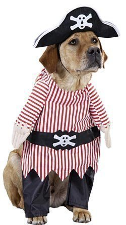 Pet Pirate Dog Costume