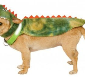 Rubies Costume Company Dinosaur Cape with Headpiece and Light-Up Collar Pet Costume