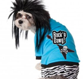 Rubies Costume Company Rock Star Pet Costume and Wig
