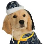 Rubie's Pet Costume, Asian Dog 3