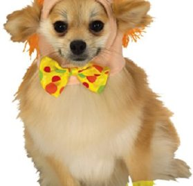Rubie's Pet Costume, Small, Clown Headpiece with Cuffs