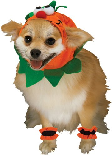 Rubie's Pet Costume, Small, Pumpkin Headpiece with Cuffs