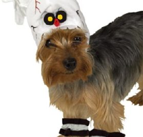Rubie's Pet Costume, Small, Skeleton Headpiece with Cuffs