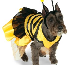 Rubie's Pet Costume, X-Small, Bumblebee Dress