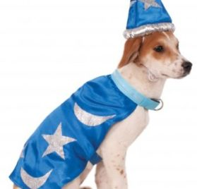 Rubie's Wizard Cape with Headpiece and Light-Up Collar Pet Costume