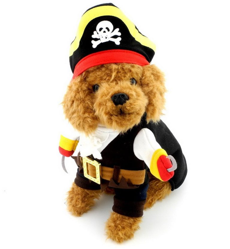 SELMAI Pet Cat Dog under 20 pounds Small Dog Pirate Costume Coat with Adjustable Hat
