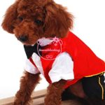 SMALLLEE_LUCKY_STORE Cat Dog Clothes Black Red Vampire Jumpsuit Cloak Coat Costume Small Dog Clothes 5