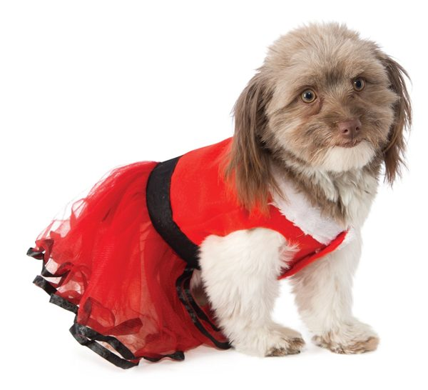 Santa's Sweetie Dog Costume