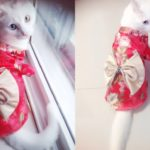 TOPSUNG Dog Clothes Kimono Style Costume Dog Princess Bowknot Dress Clothes For Small Dogs-Cats 3
