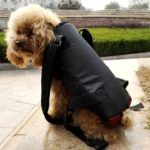 Alfie Pet by Petoga Couture - Jaden Pet Backpack or Front Carrier with Adjustable Strap 6