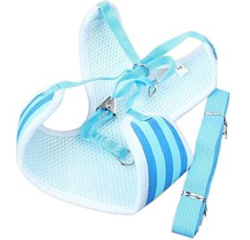 BWSC Blue Striped Soft Dog Harness And Lead Set For Chihuahua Pomeranian Puppy 2