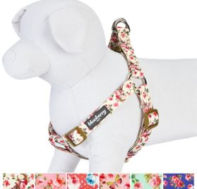 Blueberry Pet New Step-in Spring Scent Inspired Pink Rose Print Ivory Dog Harness 2