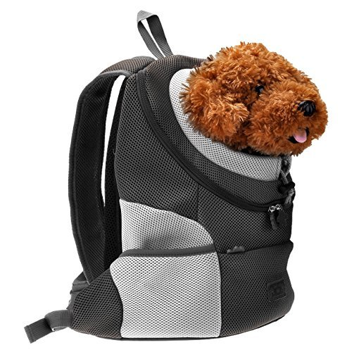 Small Dog Body Carrier
