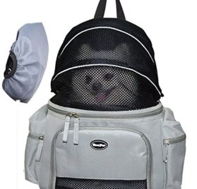 Dog Carrier for Small Pet Cat