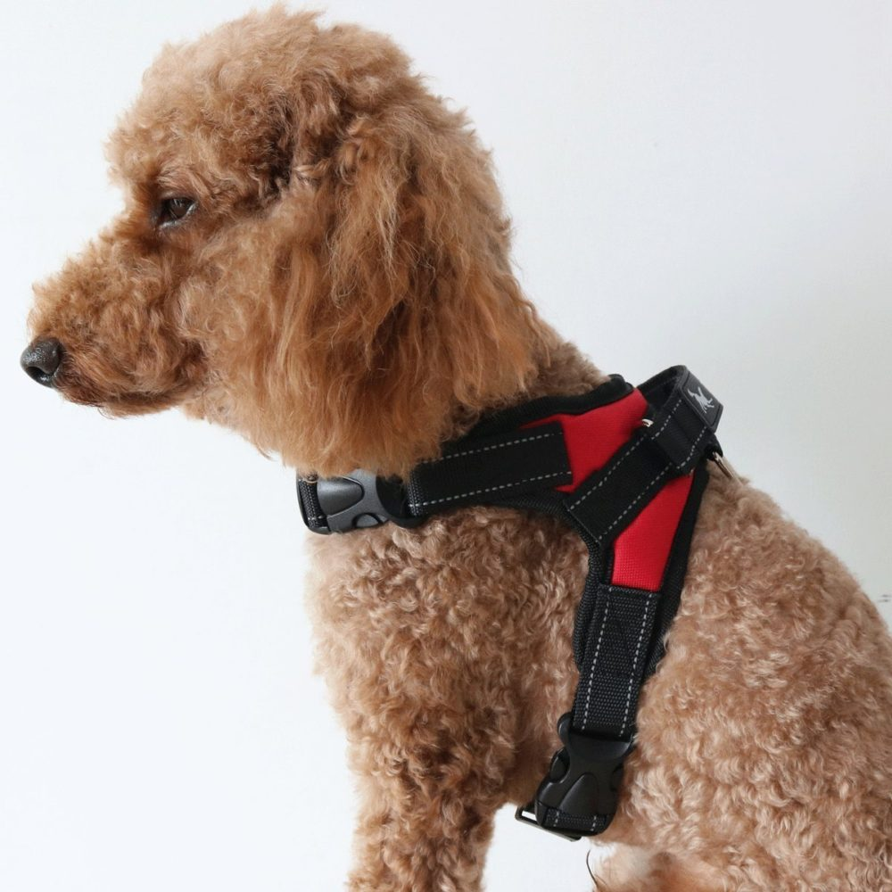 Large Dog Harness That Reflective