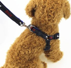 Fast and Good Dog Leash Harness, Adjustable and Heavy Duty Durable Denim Dog Leash Collar for Training Walking Running