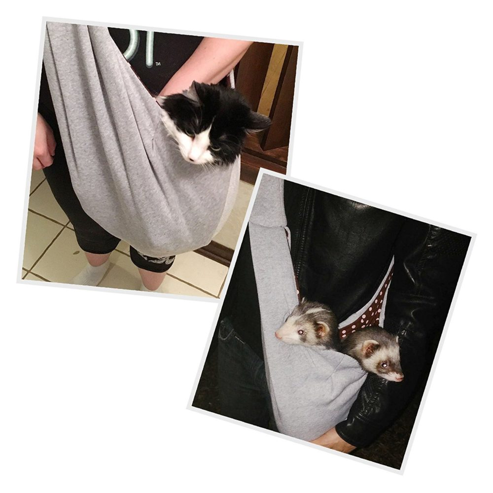 Pet Carriers For Dogs Up To  Lbs