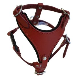 "Leather Dog Harness, Felt Padded, X Small, Red, Argentinean Leather (Malibu) For X Small breeds. Neck sizes: 6""-9.5"".Chest: 12""- 14.5"" 2"
