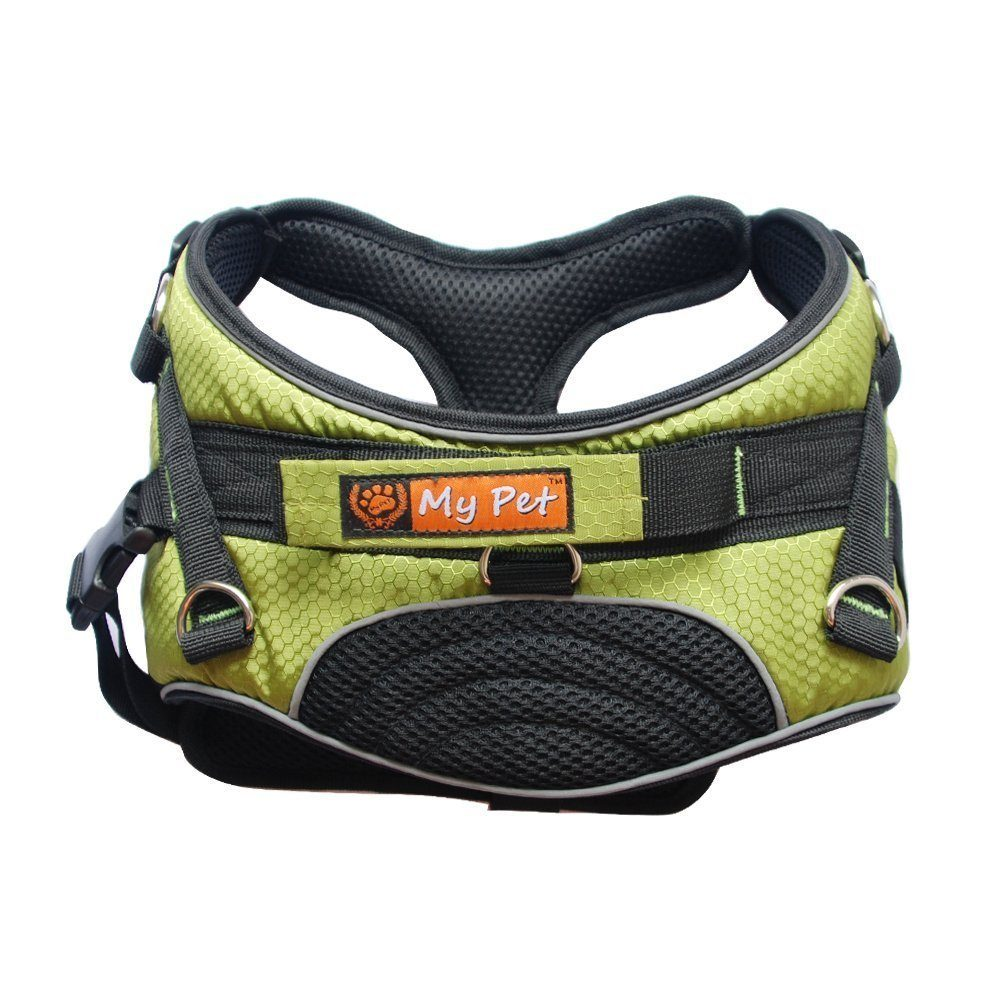 Training Collars For Large Dogs