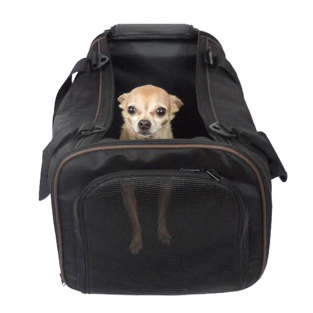 Pawfect pet pet carrier large soft sided airline approved for Air travel with dog in cabin