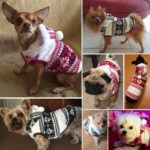 Beirui Cute Christmas Dog Jacket - Dogs Winter Coat Soft Fleece Padded Vest - Warm Pet Jumpsuit 4