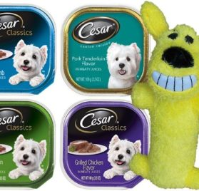 Cesar Classic Dog Food 4 Flavor 8 Can with Toy Bundle