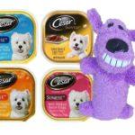 Cesar Sunrise Dog Food 4 Flavor 8 Can with Toy Bundle