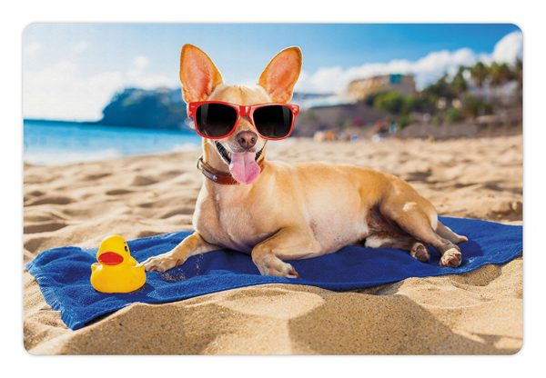 Funny Pet Mats for Food and Water by Lunarable, Chihuahua Dog at the Ocean Shore Sunbathing Smiling Coastal Charm Print, Rectangle Non-Slip Rubber Mat for Dogs and Cats, Sand Brown Light Blue