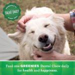 GREENIES Hip and Joint Care Dental TEENIE Dog Treats - Mega TREAT-PAK Package 18 oz. 65 Treats 8