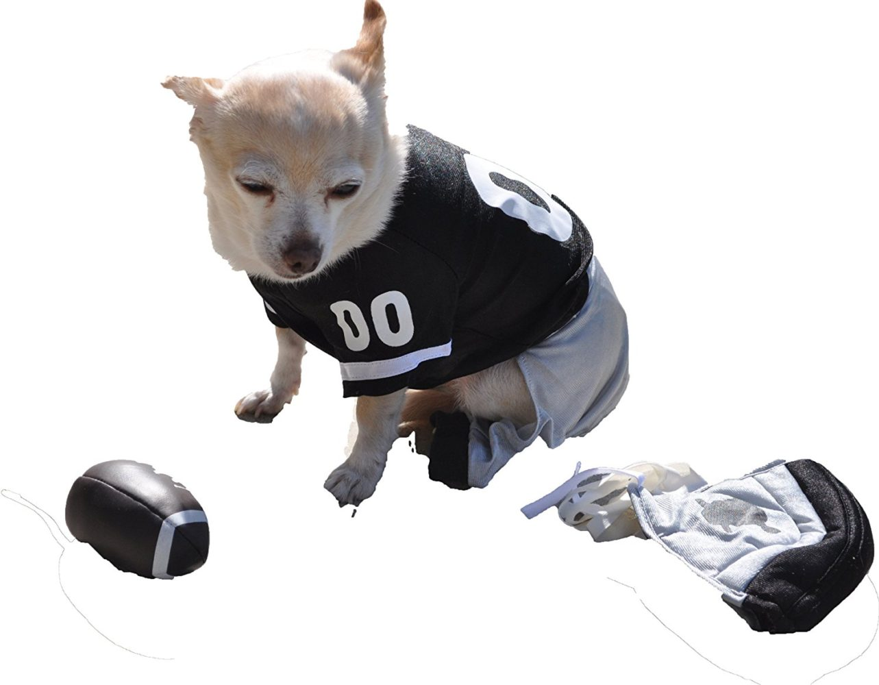 Dog Gone Cute by Louu0027s Doggie Boutique 4 Piece Football Costume (Jersey Pants Helmet and Toy Ball)-Extra Small (XS)  sc 1 st  Chihuahua Kingdom & Dog Gone Cute by Louu0027s Doggie Boutique 4 Piece Football Costume