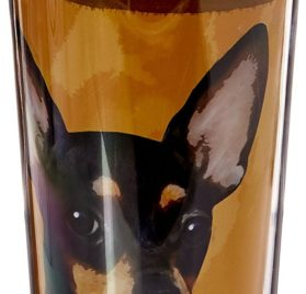 E&S Pets Stainless Steel Chihuahua Black Tumbler, 16 oz