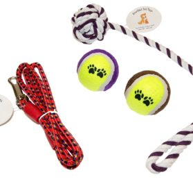 Everlast Pet Toys Rope & Leash Bundle For Dogs Knotted Ball Pull Rope Dog Park Leash