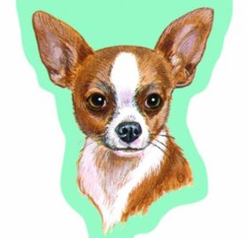 LittleGifts 2-Pack Sticky Notes Chihuahua