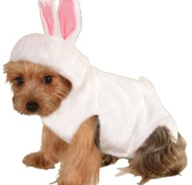 Rubie's Bunny Rabbit Pet Costume, Small 2