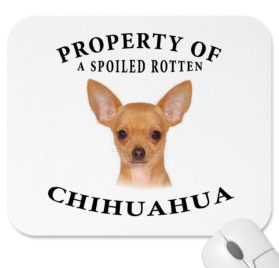 "Chihuahua Mousepad Dog Mouse Pad ""Property Of"""