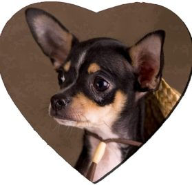 Liili Mousepad Heart Shaped Mouse Pads Mat IMAGE ID- 2811589 Chihuahua with a straw hat 2